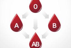 Adapter son alimentation en fonction de son groupe sanguin