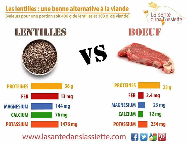 Lentilles VS Viande - different.land