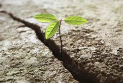 L'apparition de la vie sur Terre