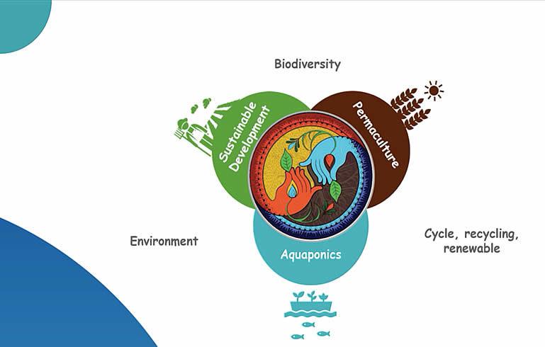 Schéma d'une agriculture régénérative prenant en compte l'environnement, la biodiversité et les cycles de renouvellement à travers le développement durable, l'aquaculture et la permaculture