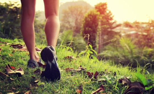 Photo d'un paire de jambes nues en chaussures de marche randonnant dans la nature
