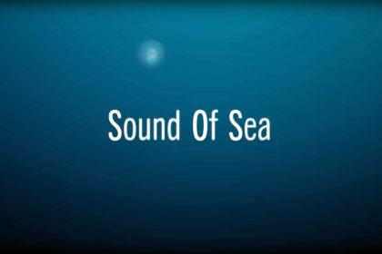 Image pour Le cri de détresse de l'océan