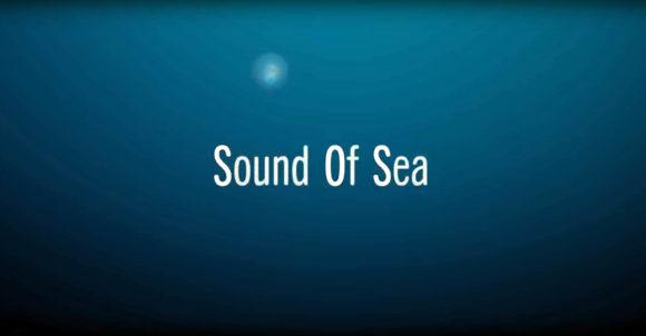 Le cri de détresse de l'océan