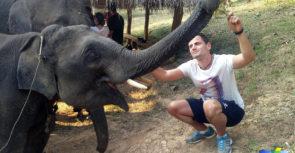 J'ai découvert pour vous l'Elephant Conservation Center du Laos