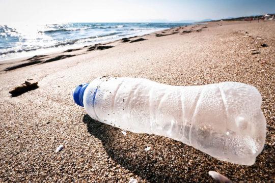 Bouteille en plastique échouée sur une plage