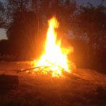 Image pour La conquête du feu