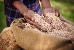 Développer le commerce équitable
