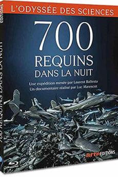 documentaire : 700 requins dans la nuit