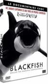 Blackfish - different.land