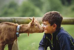 Leur enseigner l'Amour des animaux