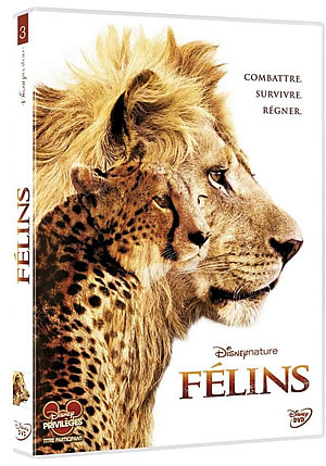Film : Félins