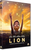 Lion - different.land