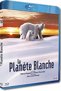La planète blanche - different.land