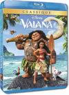 Vaiana, la légende du bout du monde - different.land