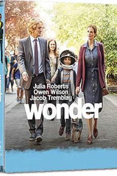 film : Wonder