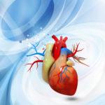 Image pour L'intelligence intuitive du cœur