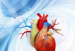 L'intelligence intuitive du cœur
