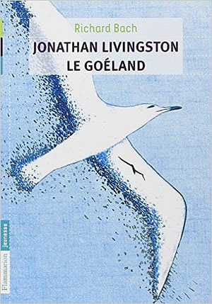 Jonathan Livingston le Goéland - different.land