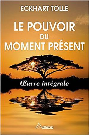 Livre : Le pouvoir du moment présent - different.land