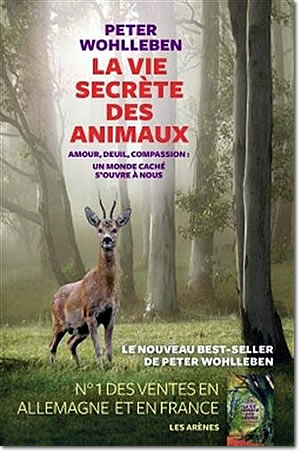 La vie secrète des animaux - different.land