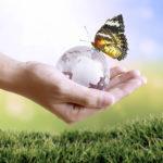 Image pour Solutionner les grands défis écologiques