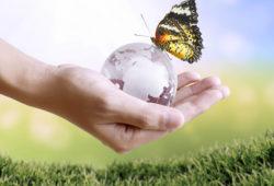 Solutionner les grands défis écologiques