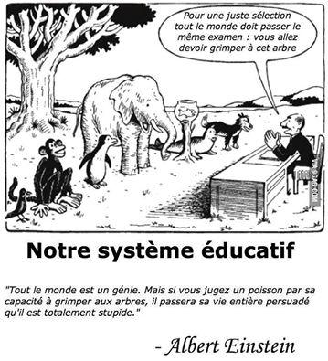Le système éducatif - différent.land